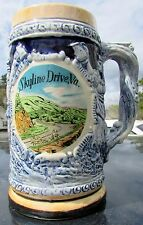 RETRO Skyline Drive, Virginia Souvenir Collectors Beer Stein