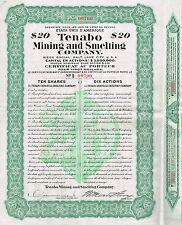MEXICO TENABO MINING & SMELTING COMPANY stock certificate 1910