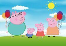 Peppa Pig Family Birthday Photoshoot Backdrop Background VINYL THIN CLOTH