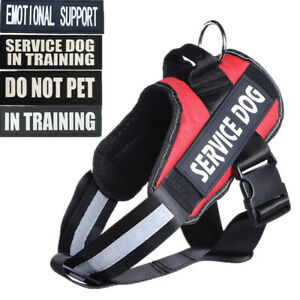 Big SERVICE Dog Harness Vest Reflective Collar W/ Patches DO NOT PET IN TRAINING
