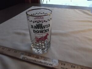 Track Give A Way Batavia Downs NY Harness Horse Racing Weighted Tumblr Glass