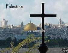PALESTINE #1 - Travel Souvenir Fridge Magnet