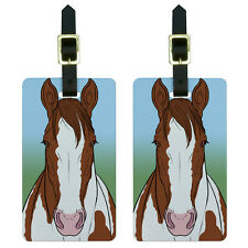 Horse Brown Paint Pinto Luggage Suitcase Carry-On ID Tags Set of 2