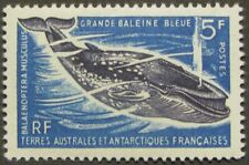 """FRENCH SOUTHERN & ANTARCTIC TERR. #25:  MNH """"Great Blue Whale"""" issue"""