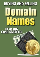 Learn How to Flip Domain names for Profit