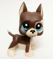 littlest pet shop LPS288 figure Brown Great Dane Dog Puppy with blue eyes