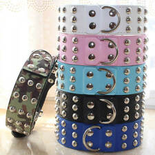 2 inches Leather Silver Studded Dog Collar for Large Breed Pit Bull Terrier