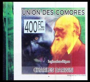 Comoros 2009 MNH Imperf, Darwin, Grey-cheeked mangabey, Monkey, Animals