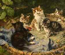 Five Kittens in a Basket by Julius Adam Art Pet Cat Kitty Playing 8x10 Print 561