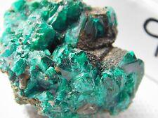 9) Dioptase Specimen Green Mineral Crystal Rock Congo Africa - Rare AAA+