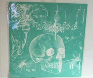 "Victorian Skull Chalk Couture Transfer 18"" x 18"" Halloween Skeleton Chandelier"