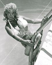 1950s NUDE 8X10 PHOTO OF BUSTY BIG NIPPLES VIRGINIA BELL FROM ORIGINAL NEG-4