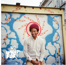 Toro y Moi - What for [New Vinyl] Digital Download