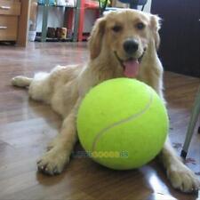 Big Giant Tennis Ball 24CM Pet Dog Thrower Chucker Launcher Play Toy Funny Games