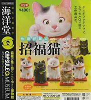 Capsule Q Museum Kunio Sato's Maneki Neko All 5 Types Set Gacha cat 320y