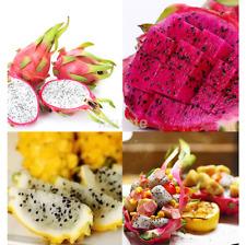 200pcs Mixed Rare Pitaya Dragon Fruit Seeds Plants Seed Home Garden CA