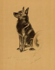 1940 Antique Schipperke Dog Print Lucy Dawson Schipperke Art Illustration 3840s