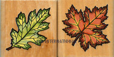 Leaves ~ 2 piece StampCraft Wood Mount Rubber Stamp Set #48478, Maple Leaf, New