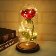 Eternal flower Beauty Red Enchanted Rose In Glass Dome Wedding Decor Gifts WT88