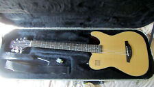 JAMES NELIGAN EW3000CN ACOUSTIC/ELECTRIC GUITAR AND HARD SHELL CASE