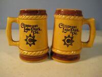 Conneaut Lake Park Pennsylvania Souvenir Salt & Pepper Shakers Set Mug Style