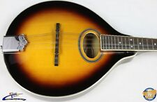Gold Tone GM-50 A-Style Mandolin, Sunburst, Never Owned, Demo Model #10414