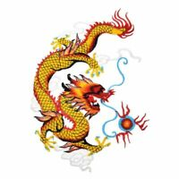Embroidered Chinese Dragon Applique Patches Sewing IronOn Frabic Craft 1Pair DIY