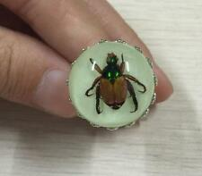 bug insect in resin ring luminous jewelry finger ring NG