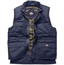 Dickies Navy Body Warmer - Bw11025 XXLarge