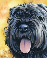 Bouvier Des Flandres Painting 8 x 10 Art Print Signed by Artist Dj Rogers