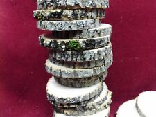 """25 ASH  WOOD SLICES WOODEN CRAFTS WEDDING ROUNDS ORNAMENTS DRIED  2 1/2""""- 3"""""""