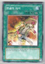 YU-GI-OH Herz des Unterlegenen Common koreanisch