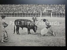 Old PC - BULL FIGHTER / FIGHTING, Finishing with the Bull