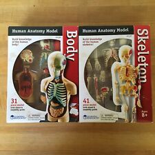 Set Of 2 Anatomical Teaching Models Body And Skeleton Anatomy Medical Stand