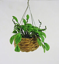 Dollhouse Miniature Hanging Philodendron Plant, A1100