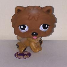 Littlest PetShop Chien CHOWCHOW CHOW CHOW 18131 DOG Pet Shop F46