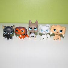 5× Pet shop toys cute cat dachshund great dane dogs 675 1615 2598 1542 994