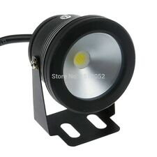 Gigging Lights, 10W, 12V, 1000 Lumens, Waterproof