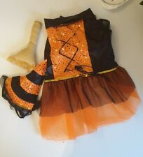 Dog Fancy Dress Witch Outfit