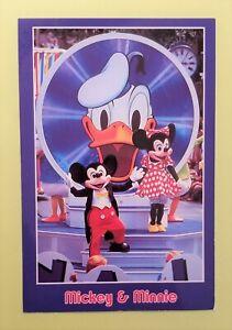 Disneyland Postcard; larger size Mickey & Minnie + Donald; vintage Disney