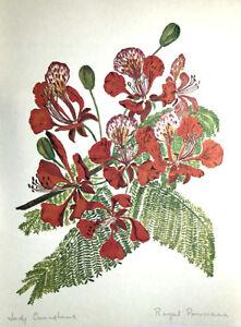 ROYAL POINCIANA FLAME FOREST ~ Floral Botanical Tropical Flower Decor Art Print