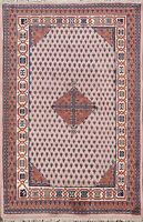 Paisley Botemir Geometric Oriental Area Rug Hand-knotted Wool Foyer Carpet 4'x6'