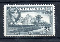 Gibraltar KGVI 1938 2d Perf 14 #124 unmounted mint WS12596