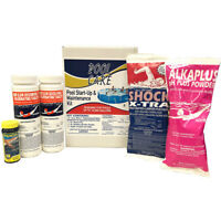 Qualco 42003 Swimming Pool Chemical Cleaning Kit for Pools up to 10,000 Gallons