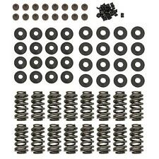 Summit Racing® GM LS Dual Valve Spring Upgrade Kit 174003