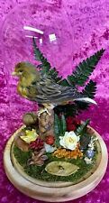 002 Antique Victorian Style Taxidermy Canary Bird Glass Dome Display Natural