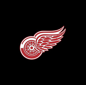 DETROIT RED WINGS NHL TEAM LOGO VINYL DECAL PERMANENT TRUCKS CAR TOOLBOX WINDOW