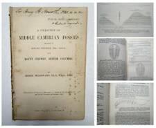 1902 1st BURGESS SHALES Fossils TRILOBITES Anomalocaris Edward Whymper Geology