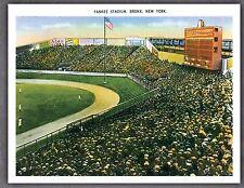 Set of 10 Yankee Stadium Vintage Postcards Baseball Vintage Americana New York