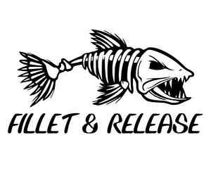 fillet & release decal fishing car boat fillet knife window bumper sticker gift